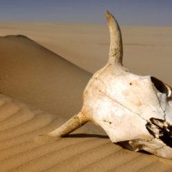 """Hiába a forradalom, sok helyen még """"teljes a sörsivatag"""""""