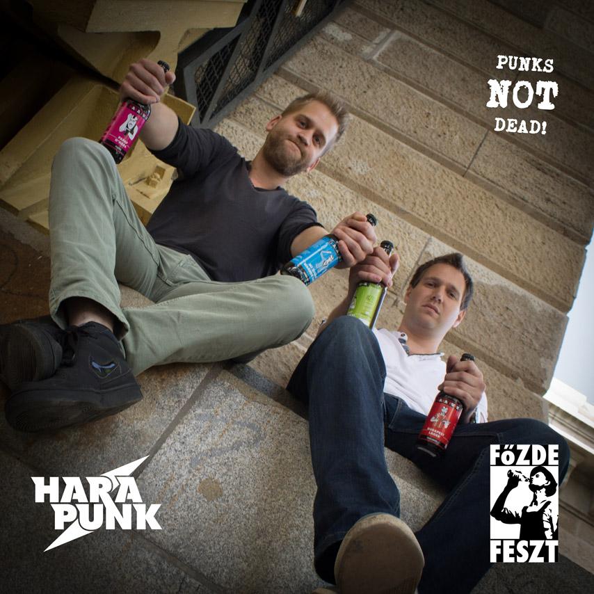 hara_punk