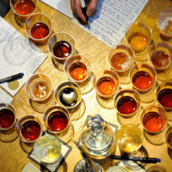 Ezúttal Csehországból hoztak érmeket magyar sörök