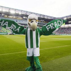 Újra lesz Fradi Sör, de többé nem Pécsen készül