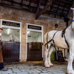 Lovakkal szállítják házhoz a sört Yorkshireben
