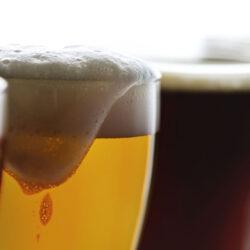 Hódmezővásárhely vadiúj sörfőzdéje is megnyílt